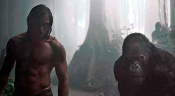 Tarzan e una scimmia