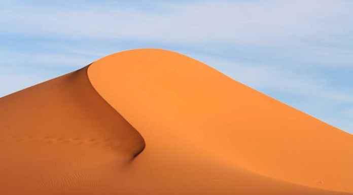 Duna del deserto
