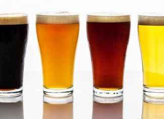 Bicchieri di birra artigianale scure e bionde