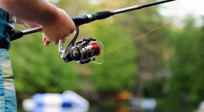 Guida alla pesca sportiva in mare e in acqua dolce  come e dove pescare   Itinerari per pescatori e consigli su canne 7c6af9be766a