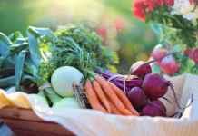 Prodotti biologici in una cesta