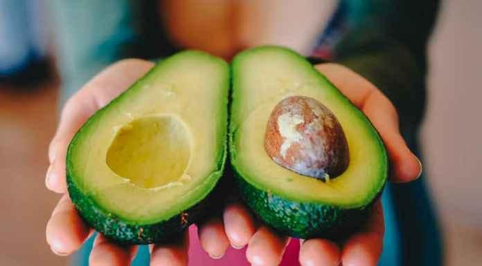 Frutto di avocado tagliato in due