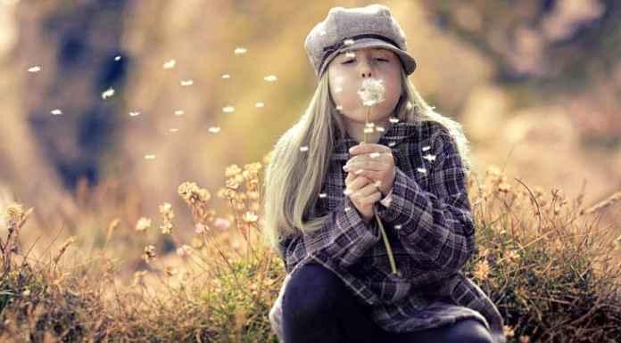 bambina con abbigliamento da bambini autunnale soffia un fiore