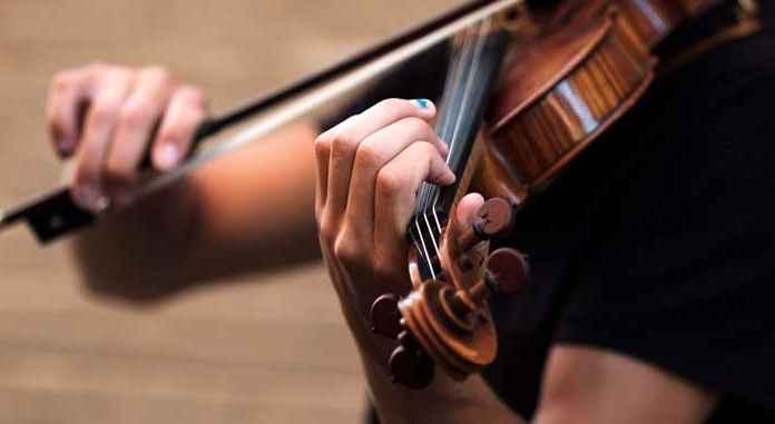 Violino con violinista