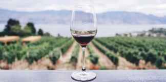 Bicchiere di vino biologico
